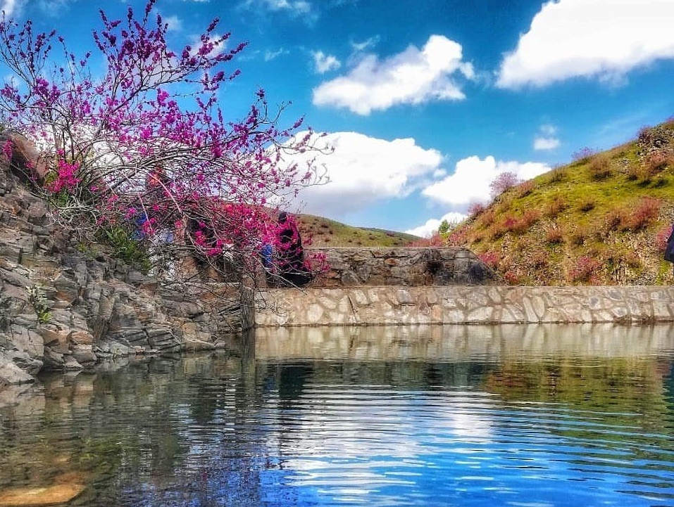 ارغوان دره مشهد